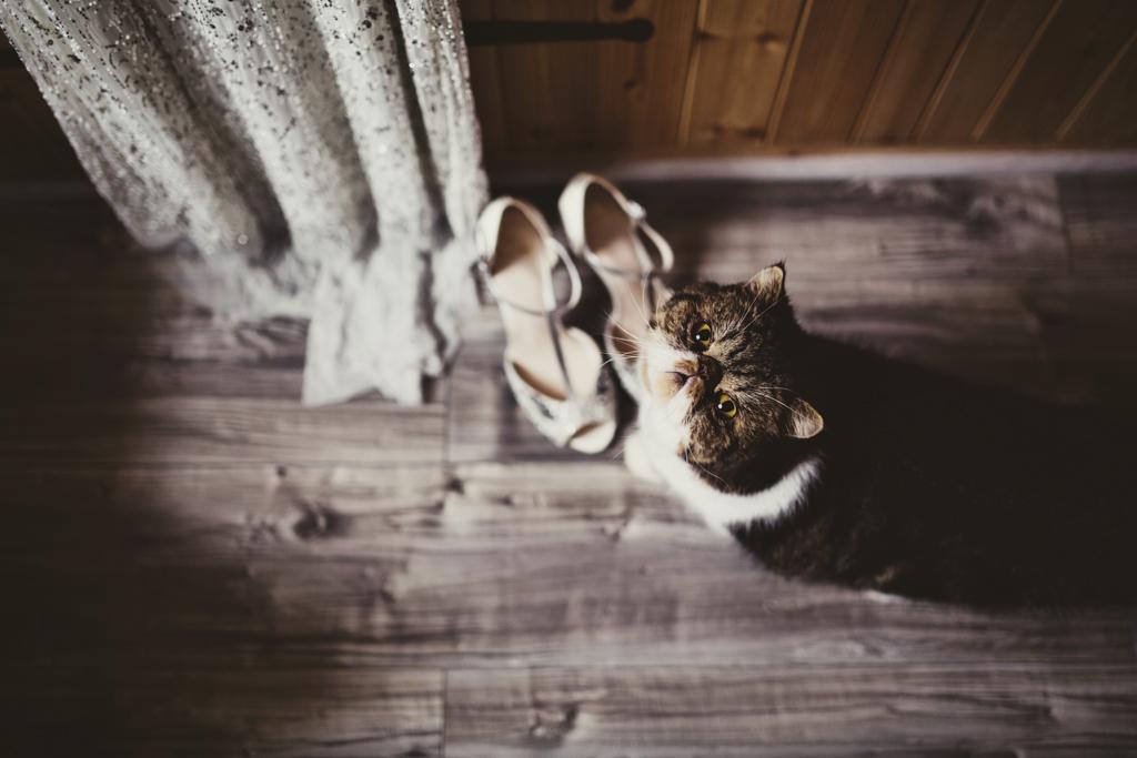 EA-Lisa-Jane-Photography-011